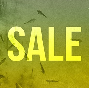 Carp Fishing Spring Sale